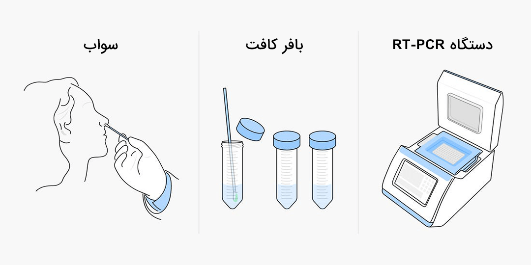 تست یا آزمایش PCR