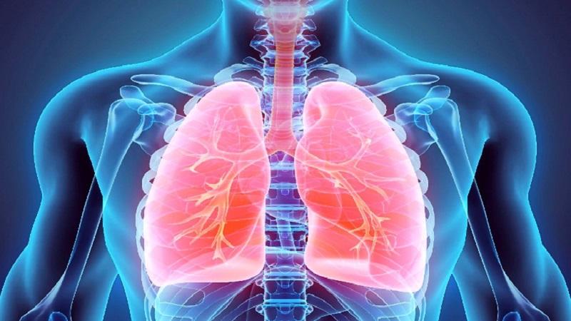 آیا ریه ها تنها قسمتی از بدن هستند که تحت تاثیر ویروس کرونا قرار میگیرند؟